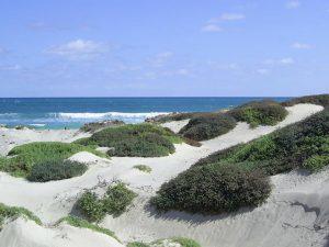 maio-sand-dunes-huge