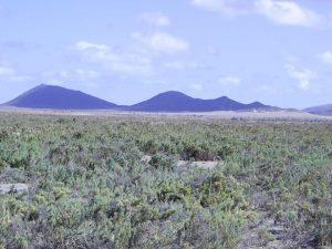 maio-wild-landscape-07