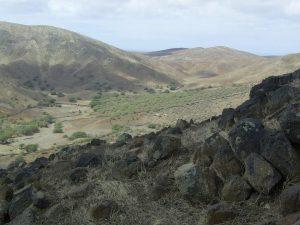 maio-wild-landscape-11