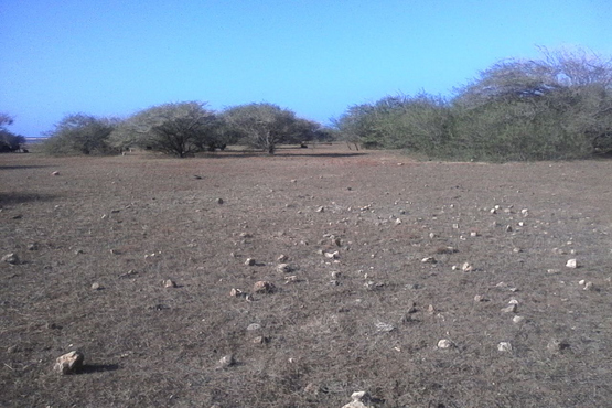 Land for sale on Maio in Cape Verde, Looking East