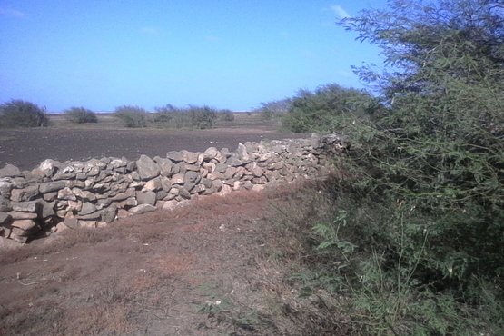 Plots of land for sale on Maio in Cape Verde Funchago looking North