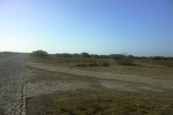 Land for sale on Maio in Cape Verde, Looking Sorth