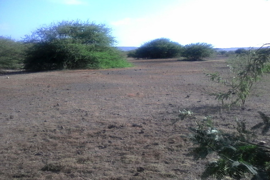 Land for sale on Maio in Cape Verde, Looking West