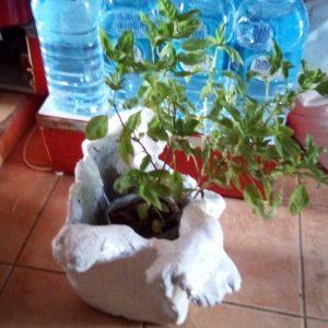maio locally made garden vases tubs made to order cement 02
