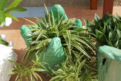 handmade concrete garden planters for plants featured image
