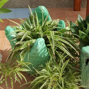 handmade concrete green garden tub with plant