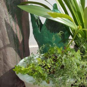 handmade concrete round garden planter with plant