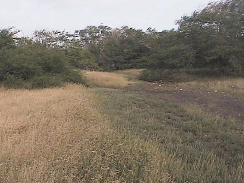 funchago large plot of land for sale maio cape verde 02