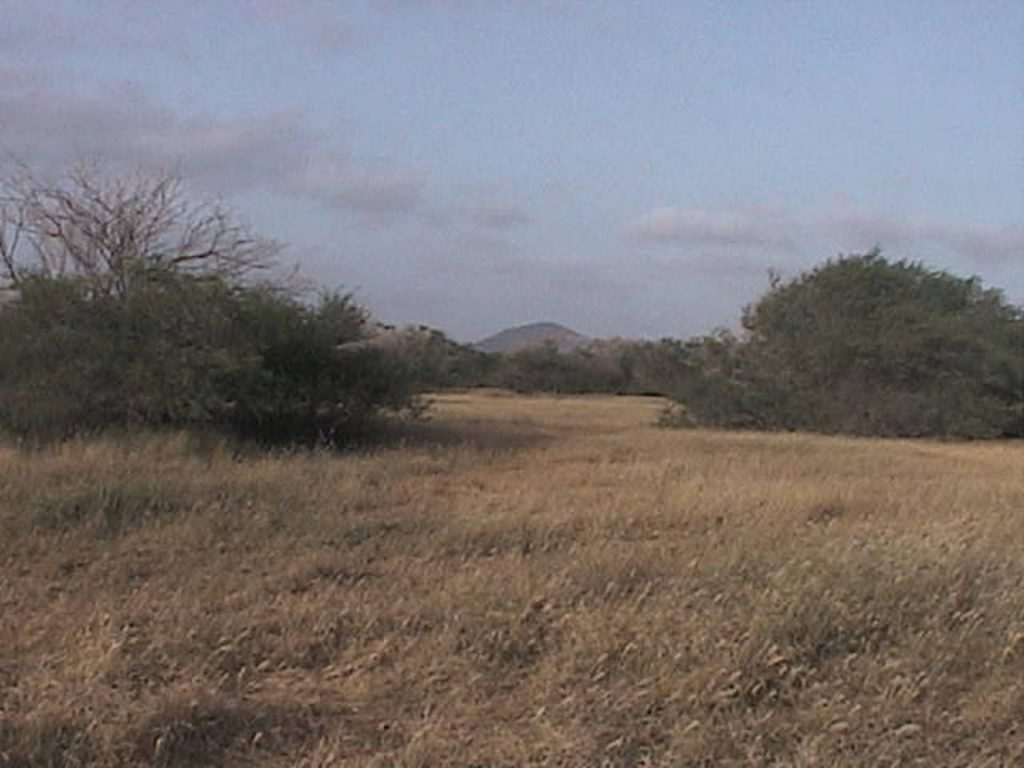 funchago large plot of land for sale maio cape verde 12