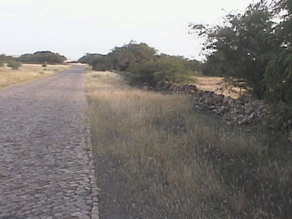 funchago large plot of land for sale maio cape verde 16