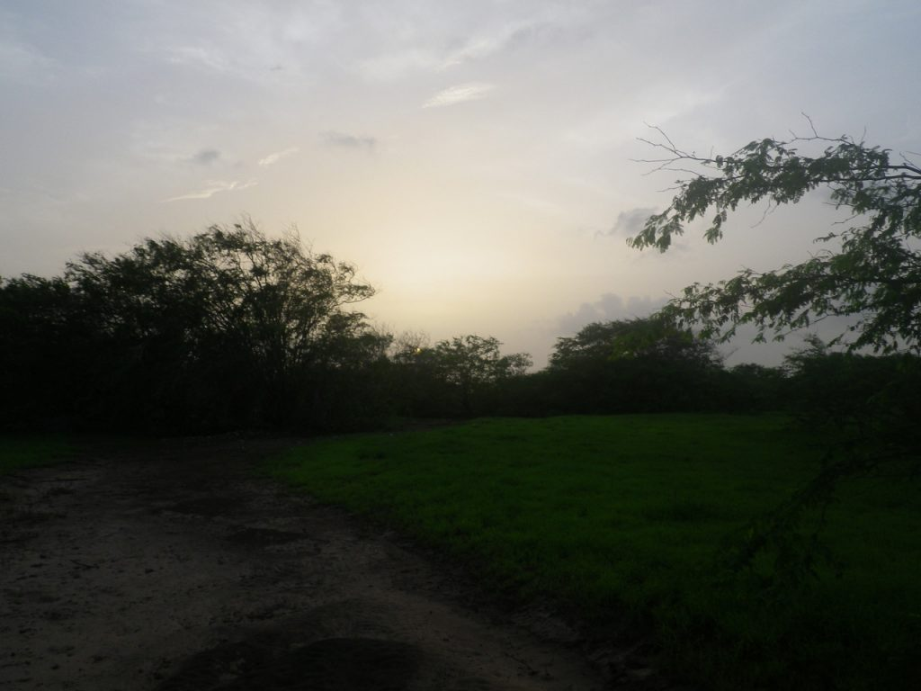 funchago large plot of land for sale maio cape verde 24